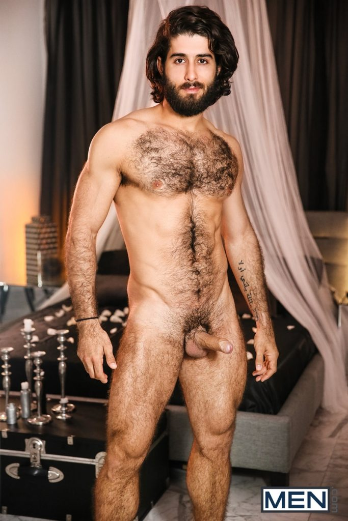 Brazilian hairy hot gay porn star Diego Sans naked sexy 006 porn solo gay photo 683x1024 - Brazilian hairy hotness gay porn star Diego Sans sexy naked