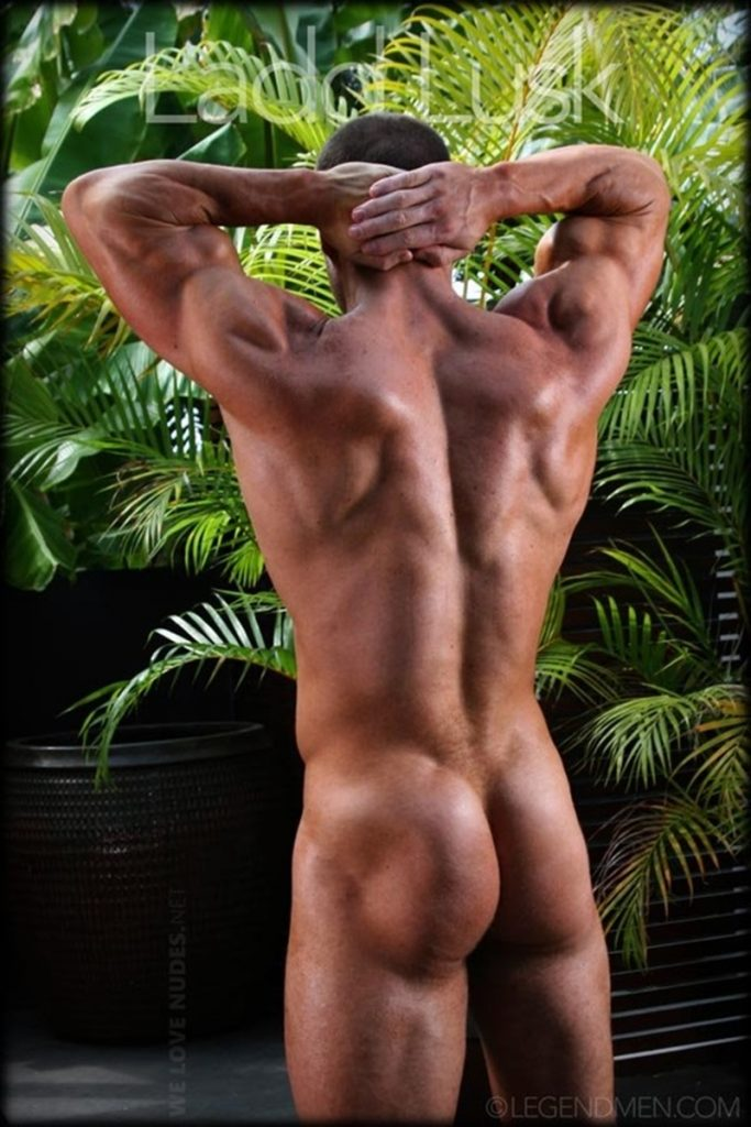 Gorgeous shaved headed muscle dude Ladd Lusk 005 gay porn pics 683x1024 - Gorgeous shaved-headed muscle dude Ladd Lusk