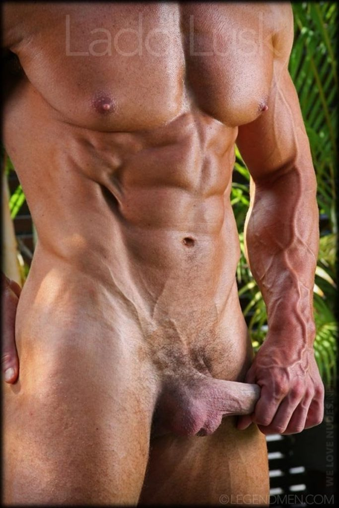 Gorgeous shaved headed muscle dude Ladd Lusk 007 gay porn pics 683x1024 - Gorgeous shaved-headed muscle dude Ladd Lusk