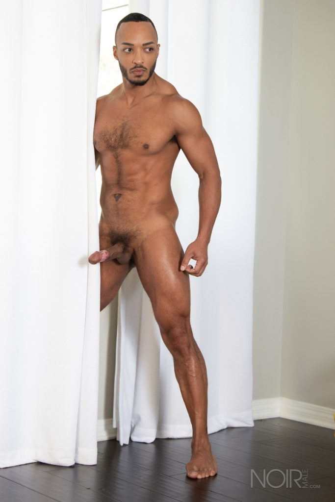 Hot sexy black muscle dude Dillon Diaz 010 gay porn pics 683x1024 - Hot sexy black muscle dude Dillon Diaz