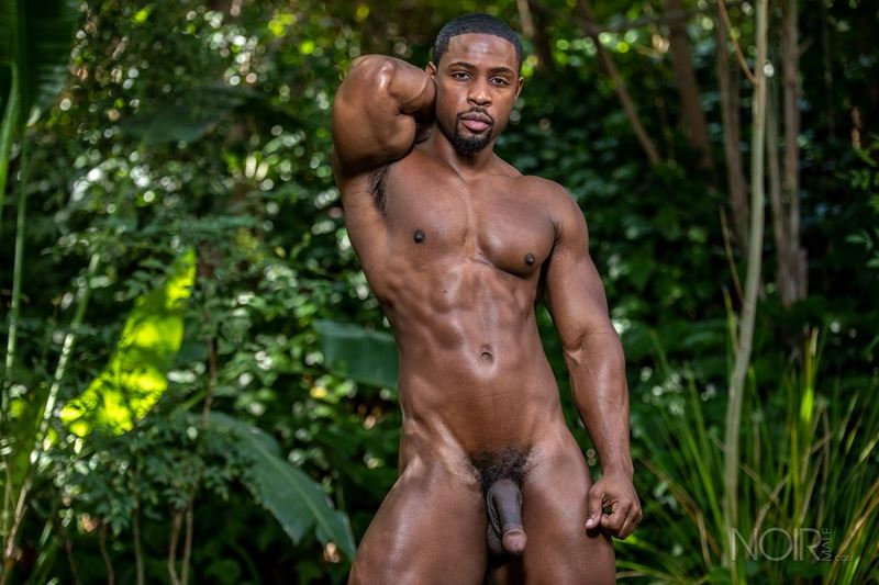 Hot ripped black muscle dude DeAngelo Jackson strips naked jerking huge cock 008 gay porn pics - Hot ripped black muscle dude DeAngelo Jackson strips naked jerking his huge cock