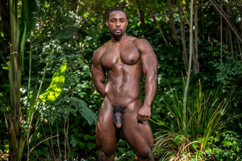 Hot ripped black muscle dude DeAngelo Jackson strips naked jerking huge cock 009 gay porn pics - Hot ripped black muscle dude DeAngelo Jackson strips naked jerking his huge cock